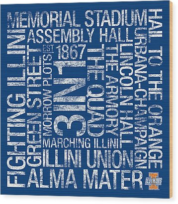 Illinois College Colors Subway Art Wood Print by Replay Photos