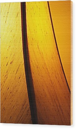 Wood Print featuring the photograph Illumination by Debi Dmytryshyn