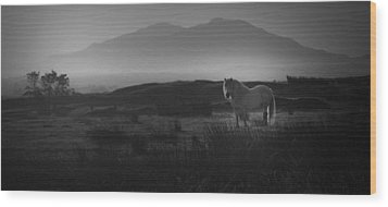 Wood Print featuring the photograph Illumination Isle Of Skye by Sally Ross