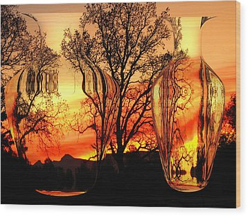Wood Print featuring the photograph Illusion by Joyce Dickens