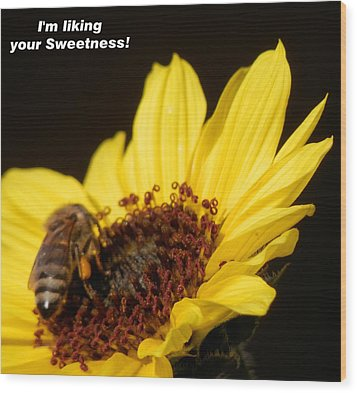 Honey Bee Sweetness Wood Print