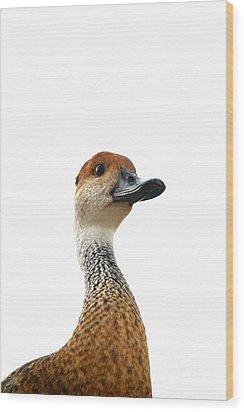 I'm Not Quacking Wood Print