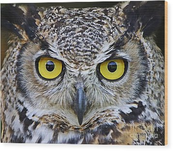 Wood Print featuring the photograph I'm Watching You by Heather King
