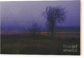 Wood Print featuring the photograph Impressionist Landscape by Julie Lueders