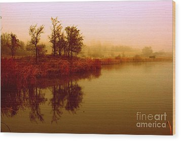 Wood Print featuring the photograph Impressionist Reflection by Julie Lueders