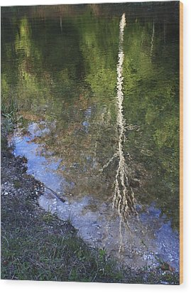 Impressionist Reflections Wood Print by Patrice Zinck