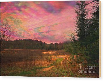 Impressionistic Morning View Of West Virginia Botanic Garden Wood Print by Dan Friend
