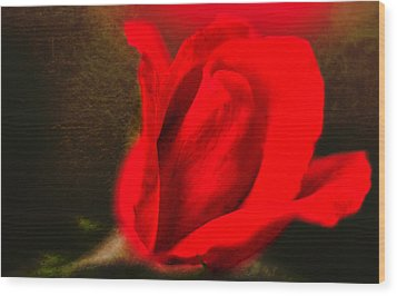 Impressionistic Rose Wood Print by Dave Bosse
