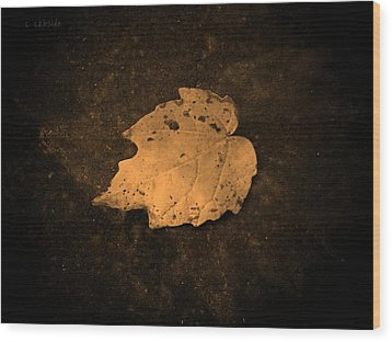 Impressions Wood Print by Chris Berry