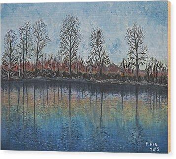 Impressions  Wood Print by Felicia Tica
