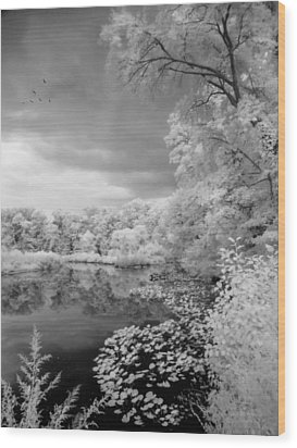 In A Dream Wood Print by John Rivera