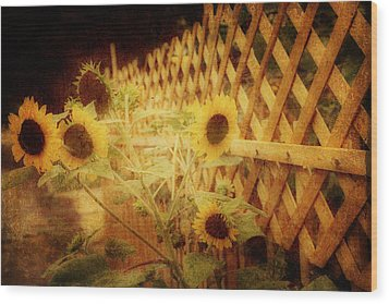 Sunflowers And Lattice Wood Print by Toni Hopper