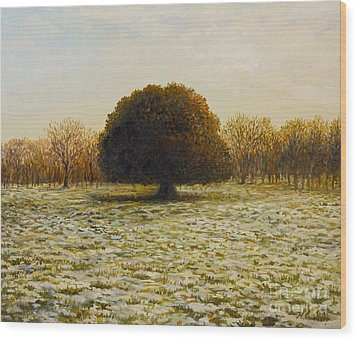 In Anticipation Of The Spring Wood Print by Kiril Stanchev