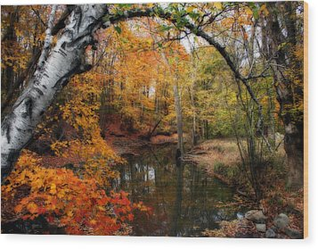 Wood Print featuring the photograph In Dreams Of Autumn by Kay Novy