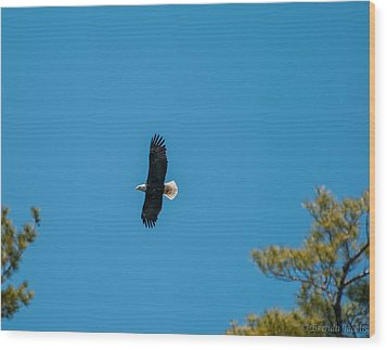 Wood Print featuring the photograph In Flight by Brenda Jacobs