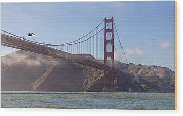 In Flight Over Golden Gate Wood Print by Scott Campbell
