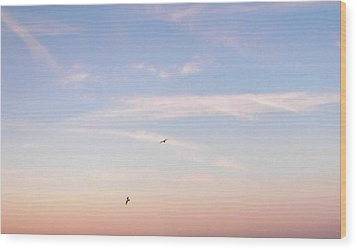 Wood Print featuring the photograph In Flight Over Rehoboth Bay by Pamela Hyde Wilson