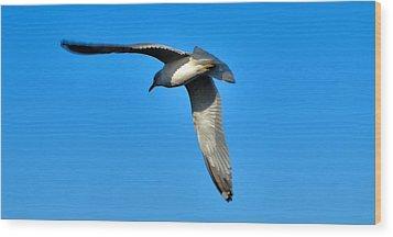 In Flight Wood Print by Thomas  MacPherson Jr