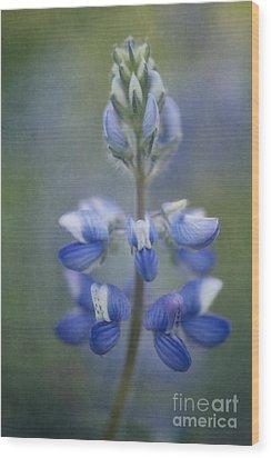 In Full Bloom Wood Print by Priska Wettstein