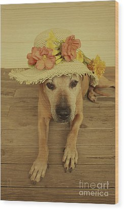 In Her Easter Bonnet Wood Print by Elaine Teague