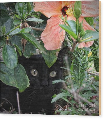 Wood Print featuring the photograph In His Jungle by Peggy Hughes