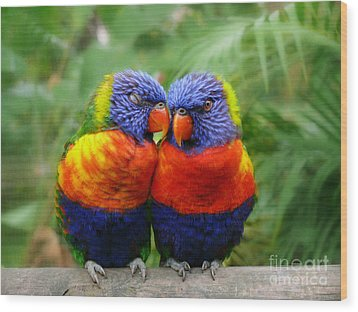 In Love Lorikeets Wood Print