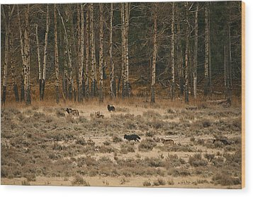 Wood Print featuring the photograph In Memory Of The Druids by Gary Hall
