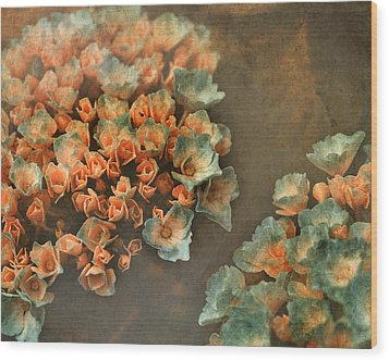 In My Dreams Wood Print by Bonnie Bruno