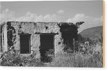 Wood Print featuring the photograph In Ruins by Diane Miller
