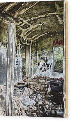 In Ruins Wood Print by Erika Weber