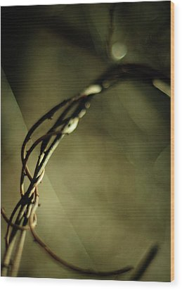 In Shadows And Light Wood Print by Rebecca Sherman