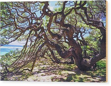 In The Depth Of Enchanting Forest Vii Wood Print by Jenny Rainbow