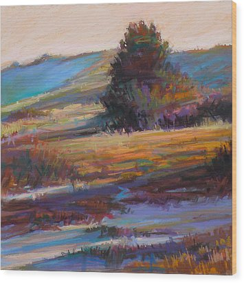 In The Dunes Wood Print by Ed Chesnovitch