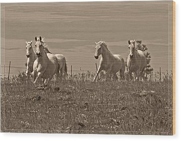 Wood Print featuring the photograph In The Field D5959 by Wes and Dotty Weber