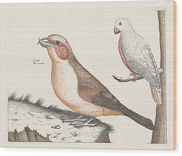 In The Foreground A Crossbill, Right On A Branch A White Wood Print by Anonymous