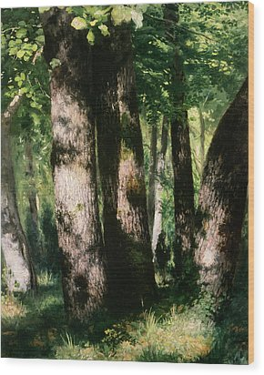 In The Forest Of Fontainebleau Wood Print by Pierre Auguste Renoir