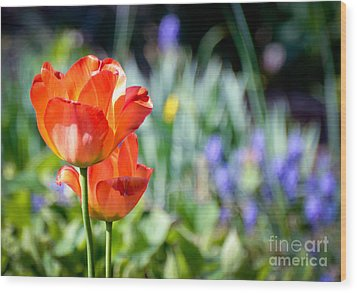 Wood Print featuring the photograph In The Garden by Kerri Farley