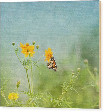 In The Garden - Monarch Butterfly Wood Print by Kim Hojnacki