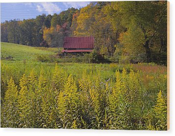In The Heart Of Autumn Wood Print by Debra and Dave Vanderlaan