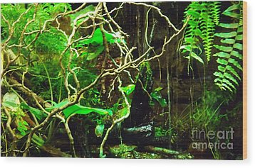 Wood Print featuring the photograph In The Jungle by Brigitte Emme