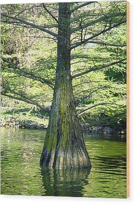In The Lake Wood Print by Roberto Alamino