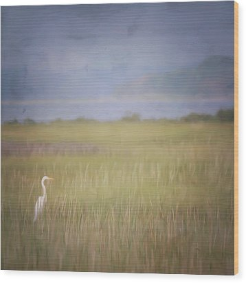 Wood Print featuring the photograph In The Marsh  by Kerri Farley