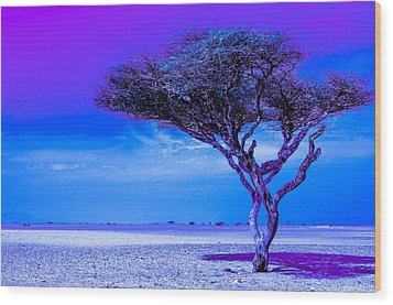 In The Middle Of Nowhere Under A Purple Sky Wood Print by Julis Simo