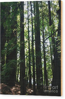 In The Midst Of Giants Wood Print by Michelle Bentham