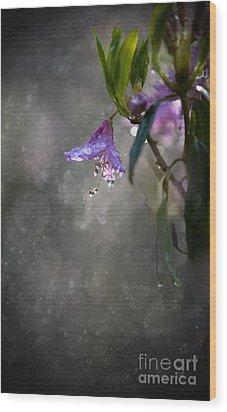 In The Morning Rain Wood Print