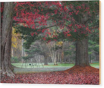 In The Park Wood Print by Bill Wakeley