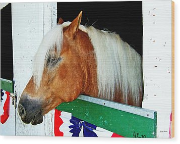 In The Stable 002 Wood Print by George Bostian