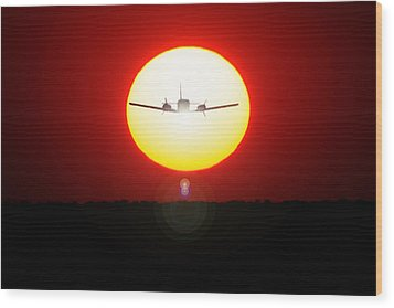 Wood Print featuring the photograph In The Sun by Paul Job