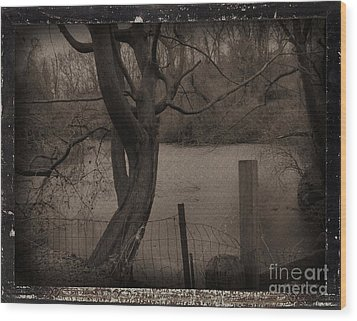 In The Times Of The Hanging Trees Wood Print by Roxy Riou
