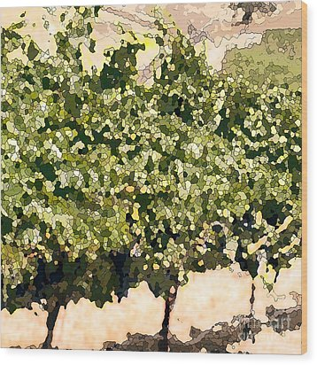 In The Vineyard Wood Print by Artist and Photographer Laura Wrede